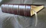 burgundy leather baby album with buck deer and night sky spine