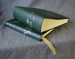 dark green vellum book cloth running horses baby journal and album set