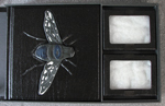 custom book with fly leather handmade esoterra clamshell specimen box