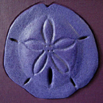 custom purple cloth and leather sand dollar book front detail
